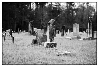 graves-317566_640
