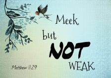 Meek but not Weak